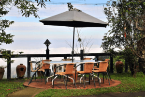 雲林咖啡莊園